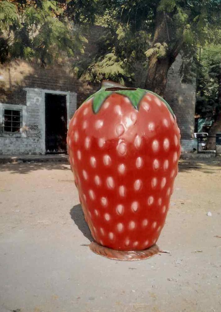 STRAWBERRY DUSTBIN